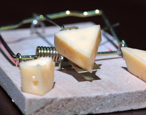 Кредит — бесплатный сыр или мышеловка?