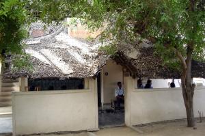 Библиотеки на пальмовых листьях